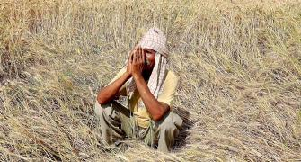 Not just rich farmers, even agri cos with Rs 215 cr profit pay no tax