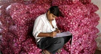 Faced with bumper supplies, Centre may buy more onions to protect farmers