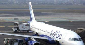 How IndiGo plans to spread its wings