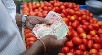 After onion, now tomato prices go up thanks to rains