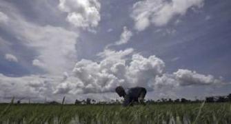 IMD tweaks monsoon forecast to help plan crops better