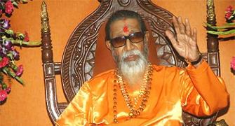 Thackeray plots a comeback to revive Sena