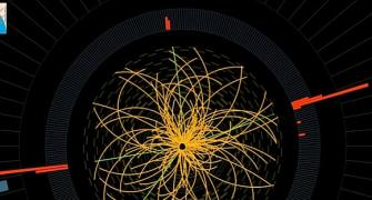 Dummies' guide to the 'God Particle'