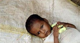 Food Security Bill will push India toward malnutrition: Modi