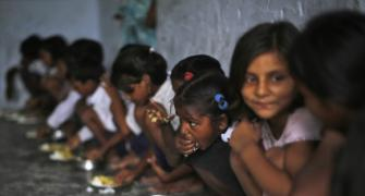 Mid-day meal SHOCKERS: Food for students tested on stray dogs