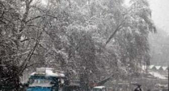 11 killed in avalanches, house collapse in J-K