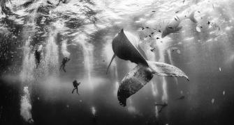 These STUNNING award-winning photos will make you want to travel
