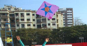 Kite runners, this Sankranti