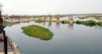 One last push to save the Yamuna