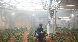 Growing crops in space, reaping the benefits on Earth