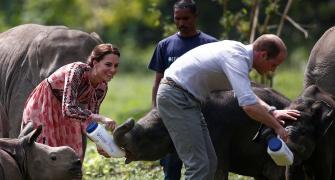 PHOTOS: Royals in the jungle: Will and Kate@Kaziranga