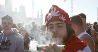 A 'high' holiday: Stoners celebrate National Weed Day