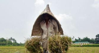 Modi Sarkar's Budget IV will keep focus on countryside