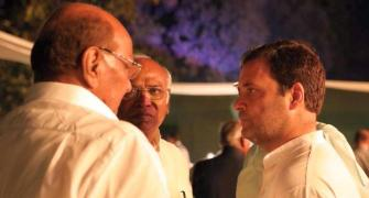 Rahul seems to lack consistency, says Sharad Pawar
