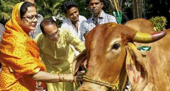 Madhya Pradesh: 'BJP is losing its pool of voters'