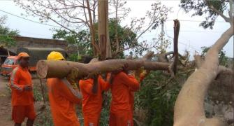 Fani: How states battled biggest cyclone in 20 years