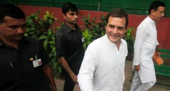 For Rahul, this election was win some, lose lots