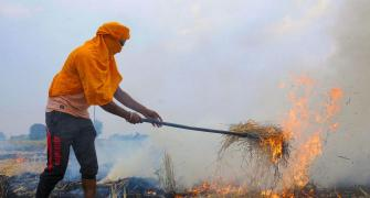 Why stubble burning will continue to choke NCR