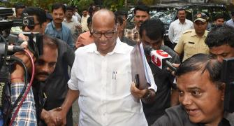 'Stable govt possible only with Sena CM': NCP