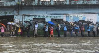 Mangroves destruction causing Mumbai flooding: Experts