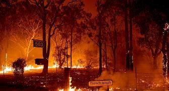 Bushfires: Can we work on climate, pleads Ashwin