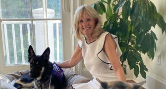 'Paw-licy' advisers: US first dogs -- Champ & Major
