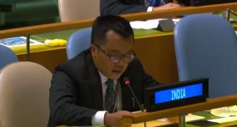 Terrorism Pak's 'only crowning glory': India at UN