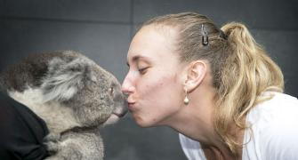 PIX: Tennis stars hang out with wild friends at Aus Open