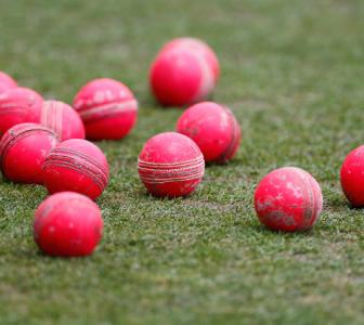 Day-night Test: BCCI orders 72 pink balls from SG