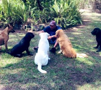 Shastri's 'social distancing' with dogs goes viral