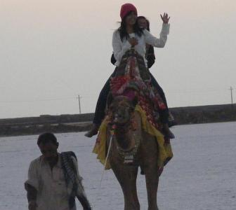 The Great Rann of Kutch: Following in Amitabh's footsteps