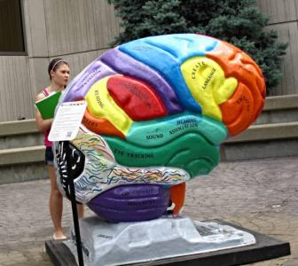5 amazing facts about the brain