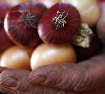 The curious case of onion prices and Bihar elections