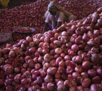 Govt bans onion export, imposes stock limit