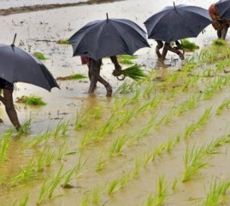 Skymet advises farmers to delay crop sowing