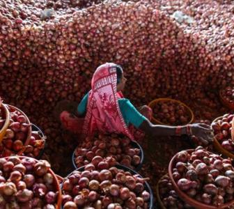 Onion prices shoot up as export curbs are lifted