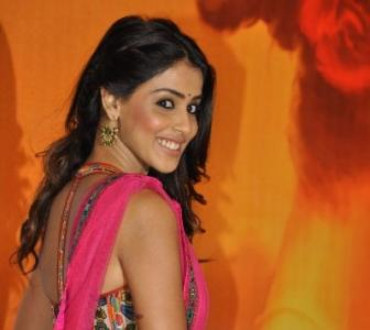 Filmi Family Tree: Know Genelia's other acting connection in Bollywood?