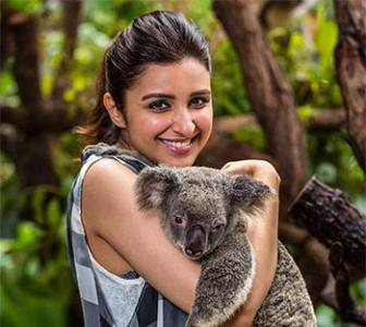PIX: Parineeti's Australian holiday