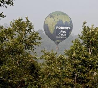 'Why are politicians handing over our forests to corporates?'