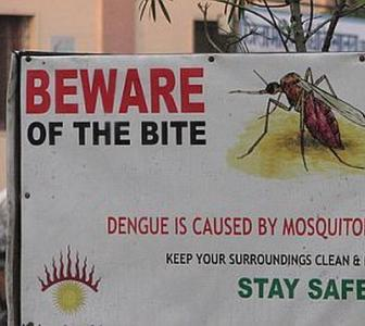 'Dengue outbreak may aggravate COVID-19 crisis'