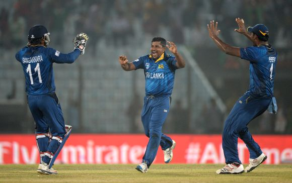 Sri Lankan players celebrate the fall of a wicket