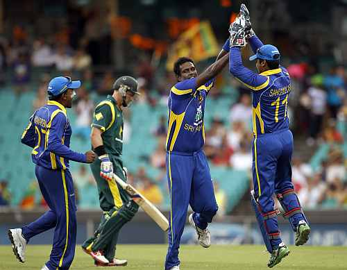Sri Lankan players celebrate afte picking up an Australian wicket