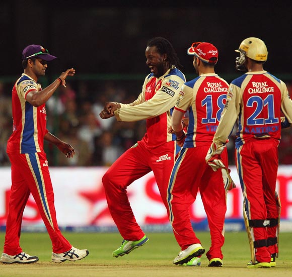 Chris Gayle celebrates getting the wicket of Ishwar Pandey