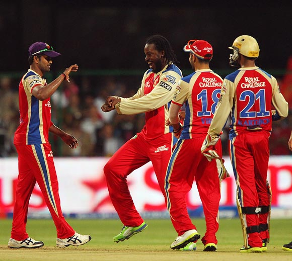 Chris Gayle celebrates taking a wicket with his Royal Challengers Bangalore team mates