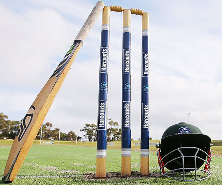 A Langwarrin club cricket bat rests on stumps