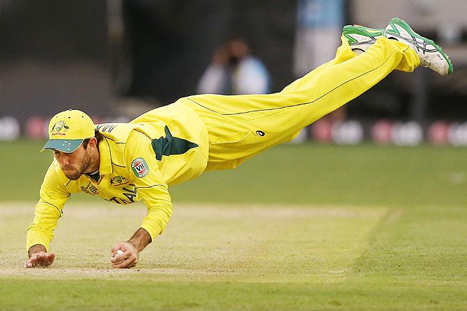 Cricket catches top 13 – michaelieclark.
