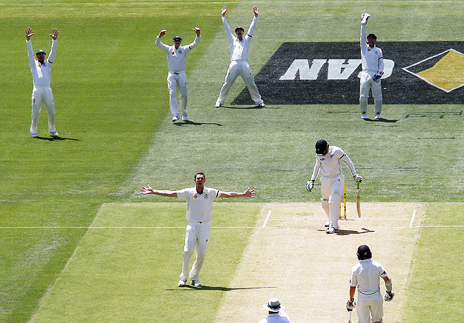 Australia's Josh Hazlewood (centre) appeals successfully with teammates for the wicket of New Zealand's Martin Guptill