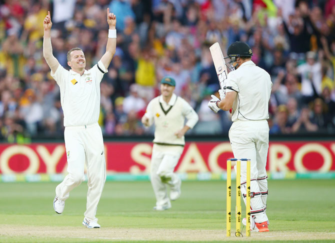 Australia's Peter Siddle celebrates dismissing New Zealand's Doug Bracewell, his 200th Test wicket
