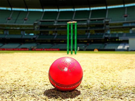 The pink cricket ball used for the Sheffield Shield match between Victoria and Queensland at Melbourne Cricket Ground, on October 28, 2015