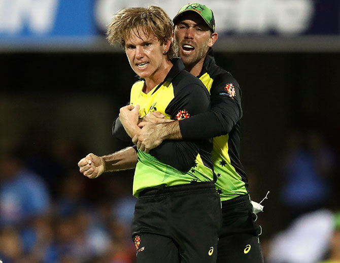 Adam Zampa celebrates after taking the wicket of Virat Kohli